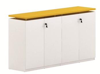 板式文件柜ZG-BSG-021