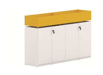 板式文件柜ZG-BSG-019